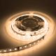 Ruban de LED Stripled 800lm/W 3000K