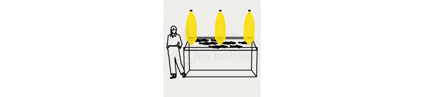 Eclairage poissonnerie : présentoir à poissons réfrigéré